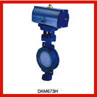 Automatic Electric Actuated Butterfly Valve / 2 Inch Butterfly Valve