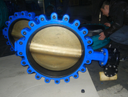 Three Way Butterfly Valves Ss304 PN10/16/125lbs/150lbs/JIS 5K/JIS10K