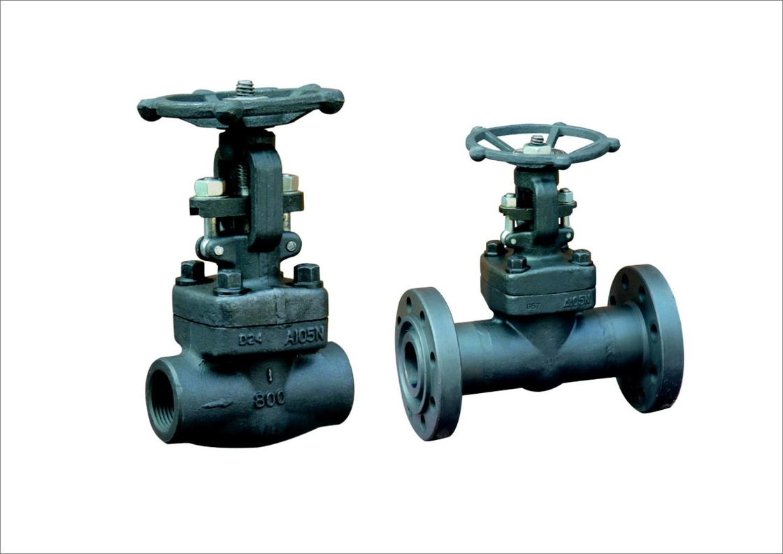 Oil Cast Steel Gate Valve With One Side Screwed One Side
