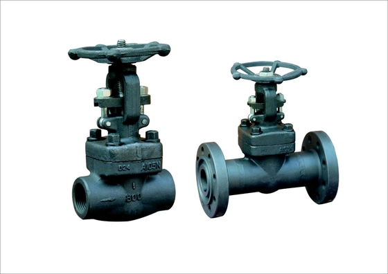 China Oil Cast Steel Gate Valve with One Side Screwed / One Side Socket Weld factory