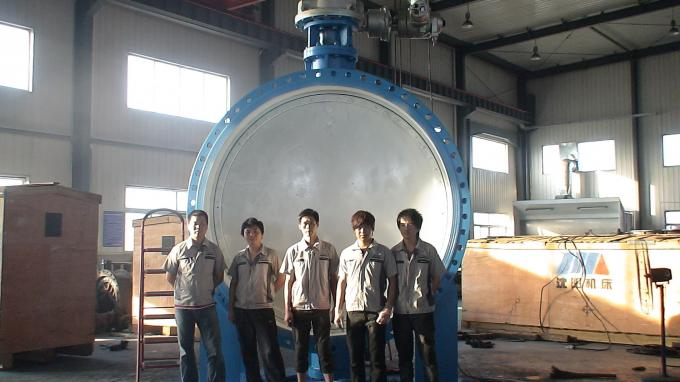 Oil Gas Butterfly Check Valve Hard Seal Stainless